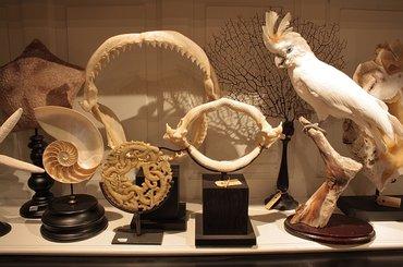 Welkom bij LuxuryByNaturenl  Luxury By Nature