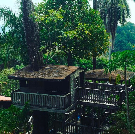 Working from a Treehouse in Costa Rica