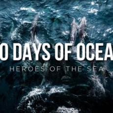 Helden der Meere