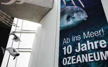 Ozeaneum Stralsund feiert zehnten Geburtstag
