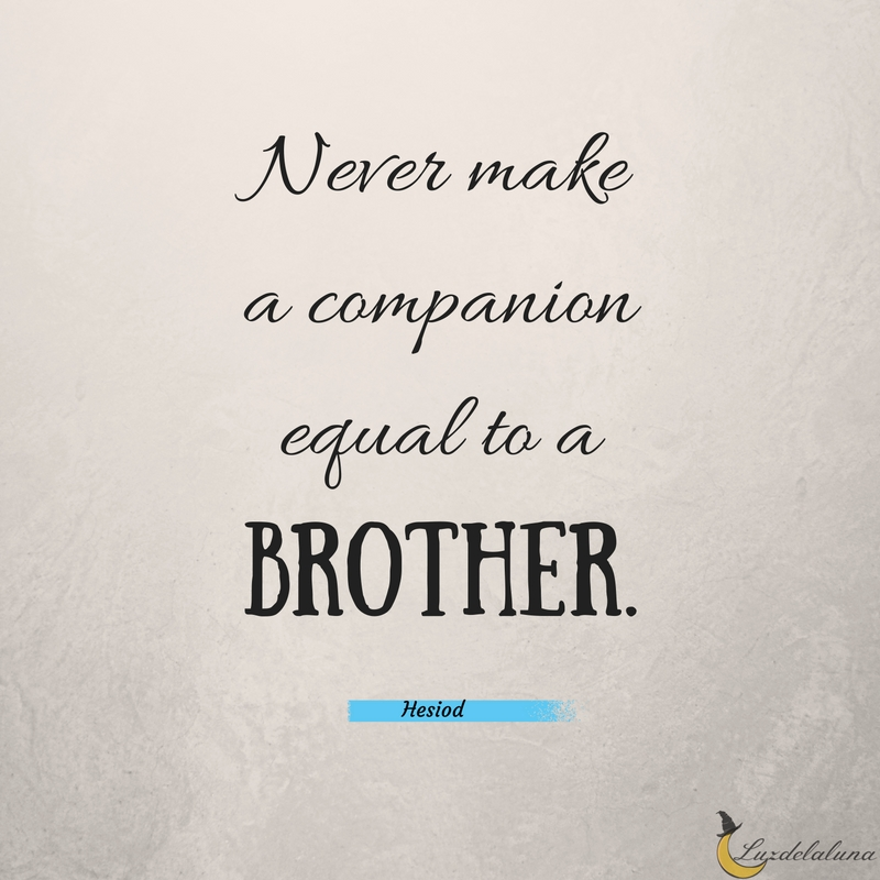 15 Awesome Brother Quotes Luzdelaluna