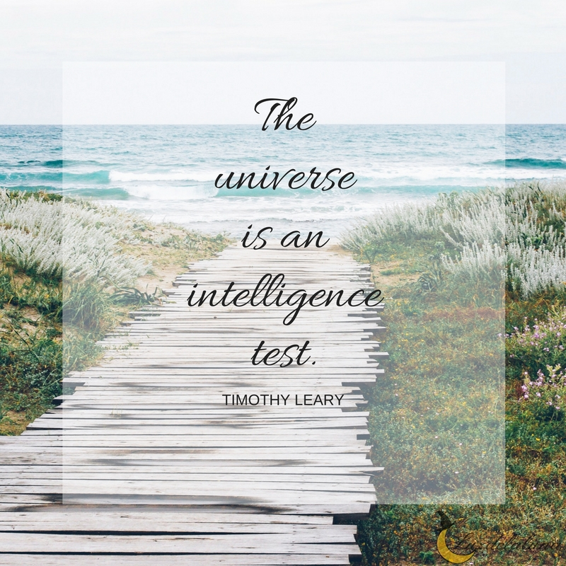 universe quotes