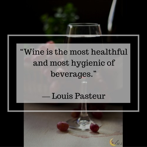 wine quotes luzdelaluna