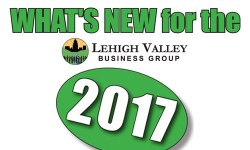 LVBG What's new in 2017!