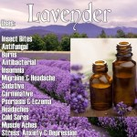 Essential Oils Wellness Advocate
