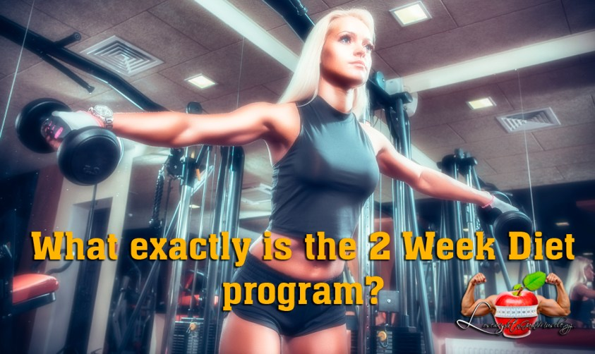 what exactly is the 2 week diet program