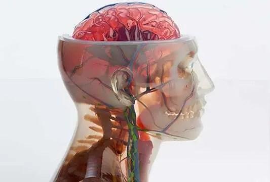 Impressão 3D de biomodelos salvando vidas humanas