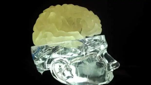 Crânio Humano de Vidro com cérebro impresso em 3D posicionado no lugar da tampa da cabeça.