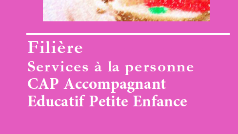 You are currently viewing CAP Accompagnant Educatif Petite Enfance