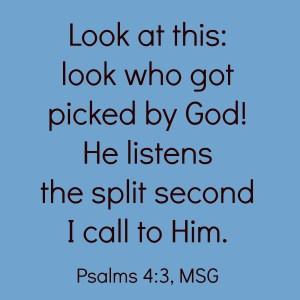 Psalms 4:3