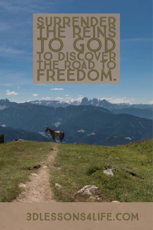 Surrender the Reins to God   3dlessons4life.com