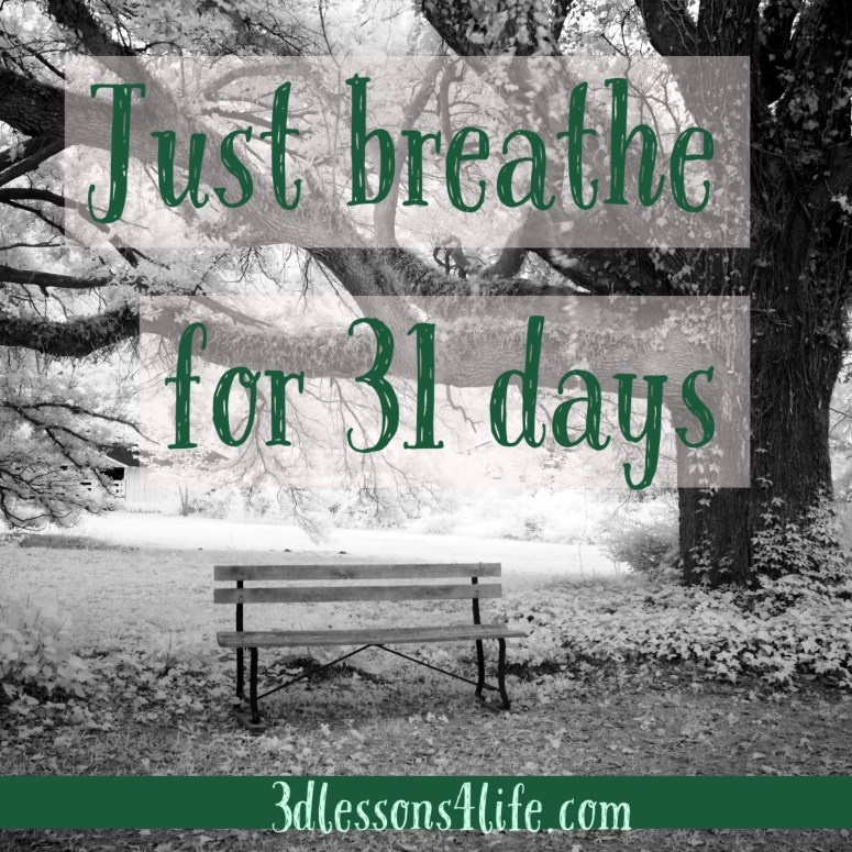 Just Breathe for 31 Days | 3dlessons4life.com