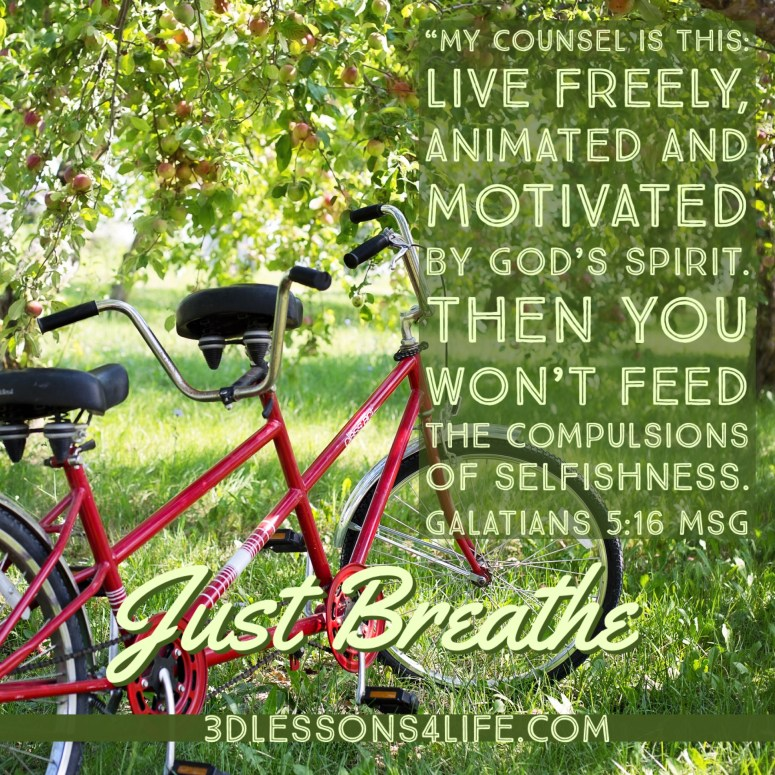 Your Breathing Coach | 3dlessons4life.com