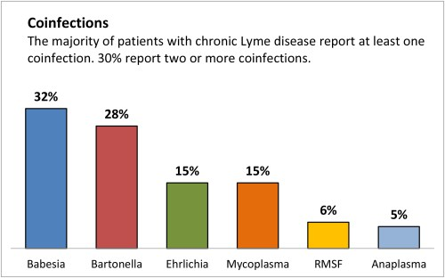 small resolution of lyme disease co infections rate