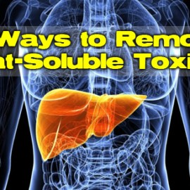 7 Ways to Remove Fat-Soluble Toxins