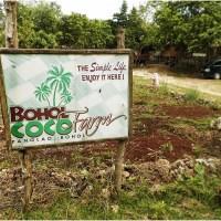 Kokosowa Farma