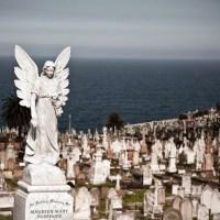 Waverley. Najpiękniejszy cmentarz na świecie.