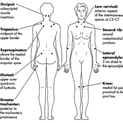 18 Tender Points Of Fibromyalgia Diagram Cj5 Steering Column The Role Manual Lymphatic Drainage In Lymphedema Blog