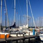 Zonnig Brouwershaven; 40 dagen stoppen met (43)