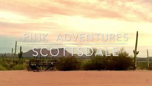 scottsdale pink adventures