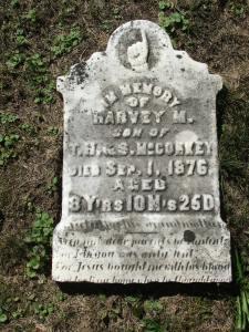 harvey-m-mccorkey-d-sep-1-1876-age-8yrs-10-mos-25-days