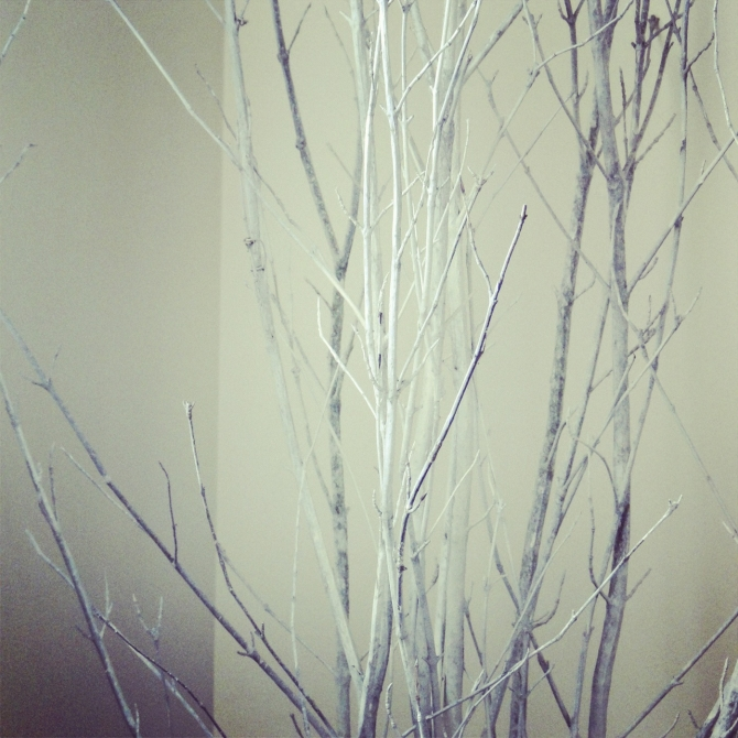 Decorating With Twigs