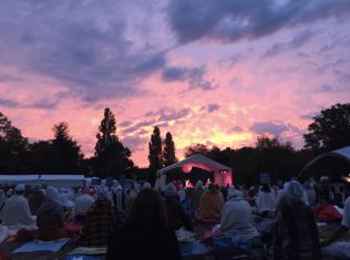 a festival in a field in france