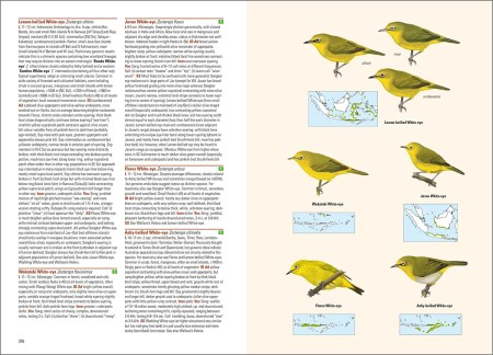 Birds of the Indonesian Archipelago_2nd edition_sample_passerines_page 376