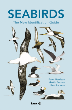 SEABIRDS: The New Identification Guide