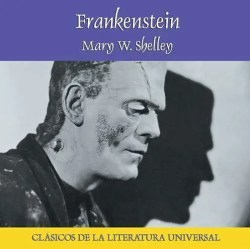 Frankenstein - MP3 book cover image