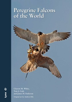 Peregrine Falcons of the World book cover image