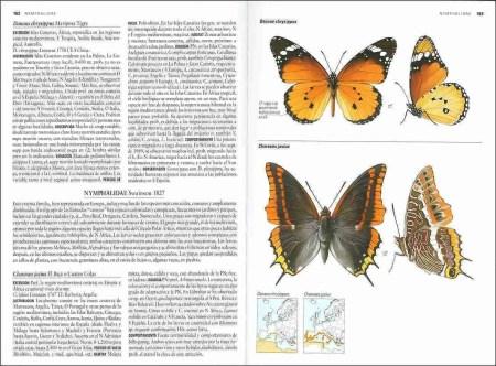 Mariposas de España y Europa sample page