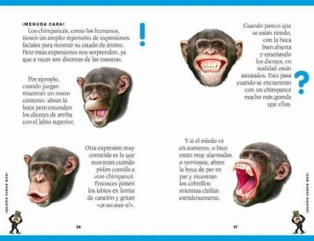 La lección de Cuatro Patas sample page