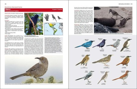 Bird Families of the World sample page