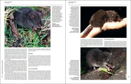 Handbook of the Mammals of the World - Volume 5 sample page