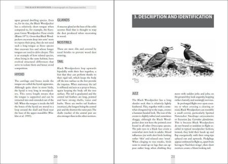 The Black Woodpecker sample page