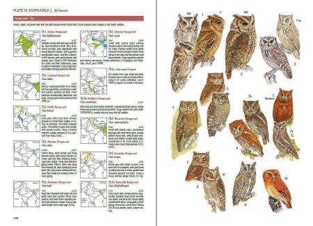 Birds of South Asia sample page