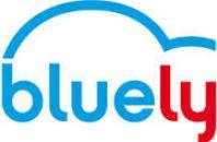 PDIE bluely lyon 7