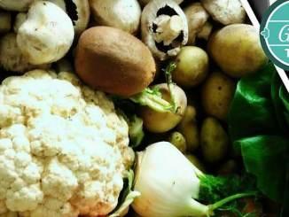 Too Good To Go aide les collectivités à lutter contre le gaspillage alimentaire