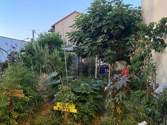17 millions d'euros de l'état pour aider à la création de jardins partagés