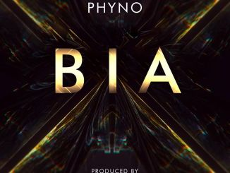 Phyno Bia Download Audio Mp3