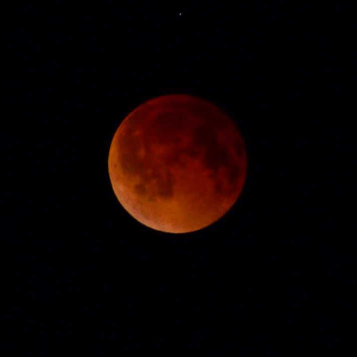 Captured the Blood Moon Eclipse