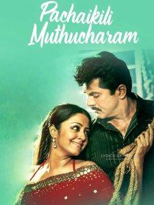 Read more about the article Karu Karu Vizhigalal Tamil song Lyrics in English – pachaikili muthucharam