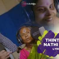 Thinthina Nathi Nathi lyrics free download