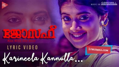 Photo of Karineela Kannulla Pennu Lyrics | Joseph Movie Songs Lyrics