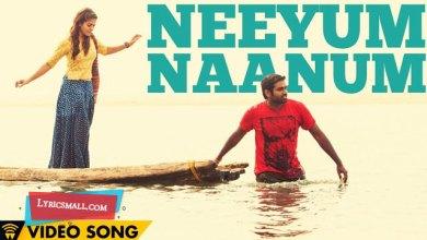 Photo of Neeyum Naanum Lyrics | Naanum Rowdy Dhaan Movie Songs Lyrics