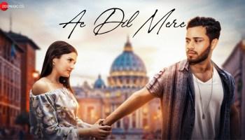 Ae Dil Mere Lyrics - Shahzeb Tejani | Daniela Boral