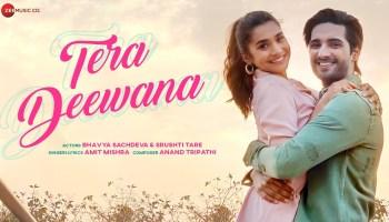 Tera Deewana Lyrics - Amit Mishra | Bhavya Sachdeva, Srushti Tare