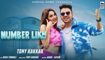 Number Likh Lyrics - Tony Kakkar | Nikki Thamboli
