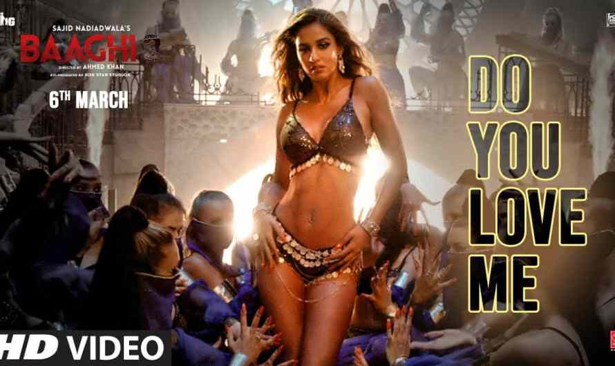 Baaghi 3 | Do You Love Me Lyrics  डू यू लव मी
